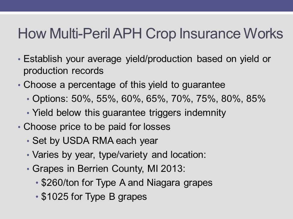 How Multi-Peril APH Crop Insurance Works Establish your average yield/production based on yield or production records Choose a percentage of this yield to guarantee Options: 50%, 55%, 60%, 65%, 70%, 75%, 80%, 85% Yield below this guarantee triggers indemnity Choose price to be paid for losses Set by USDA RMA each year Varies by year, type/variety and location: Grapes in Berrien County, MI 2013: $260/ton for Type A and Niagara grapes $1025 for Type B grapes