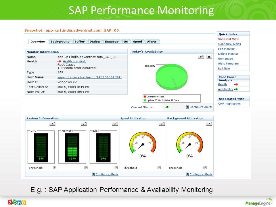SAP Performance Monitoring E.g. : SAP Application Performance & Availability Monitoring