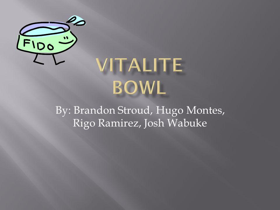 By: Brandon Stroud, Hugo Montes, Rigo Ramirez, Josh Wabuke