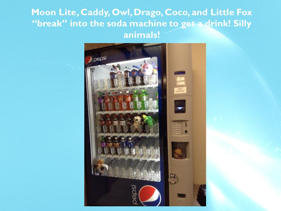Moon Lite, Caddy, Owl, Drago, Coco, and Little Fox break into the soda machine to get a drink.