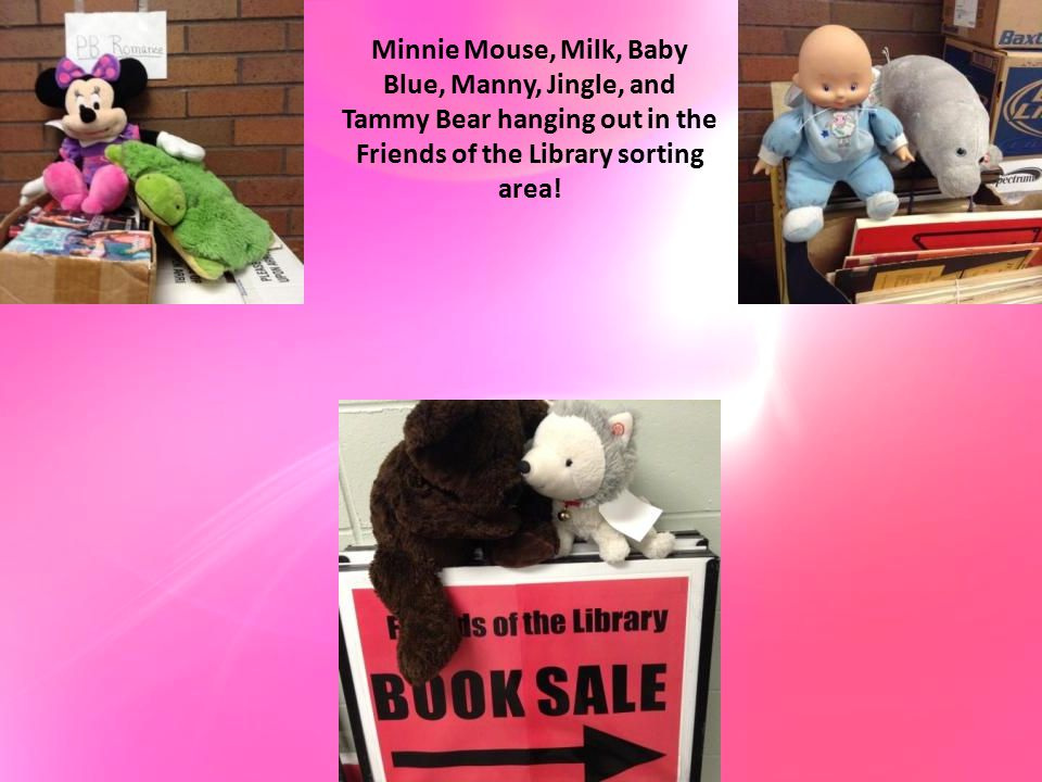 Minnie Mouse, Milk, Baby Blue, Manny, Jingle, and Tammy Bear hanging out in the Friends of the Library sorting area!