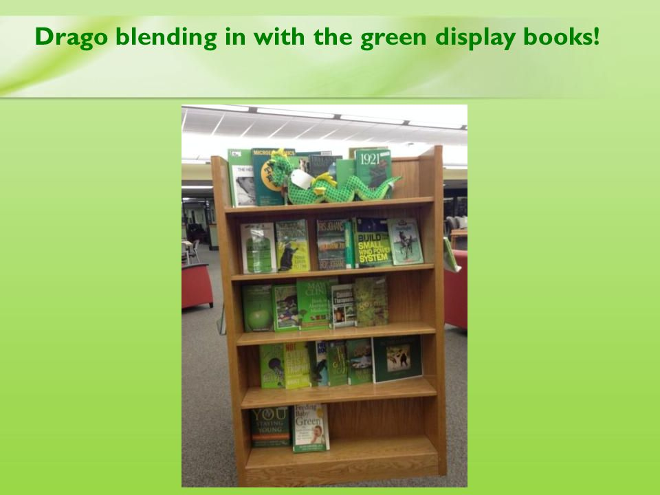 Drago blending in with the green display books!