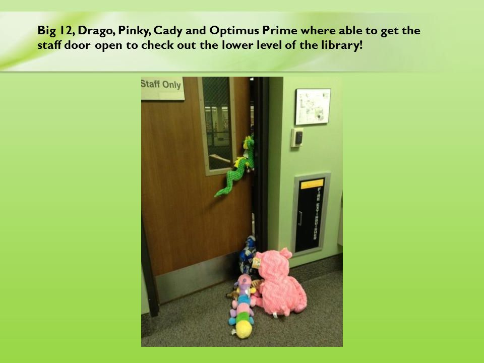 Big 12, Drago, Pinky, Cady and Optimus Prime where able to get the staff door open to check out the lower level of the library!
