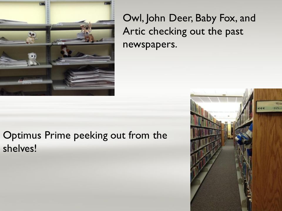 Owl, John Deer, Baby Fox, and Artic checking out the past newspapers. Optimus Prime peeking out from the shelves!