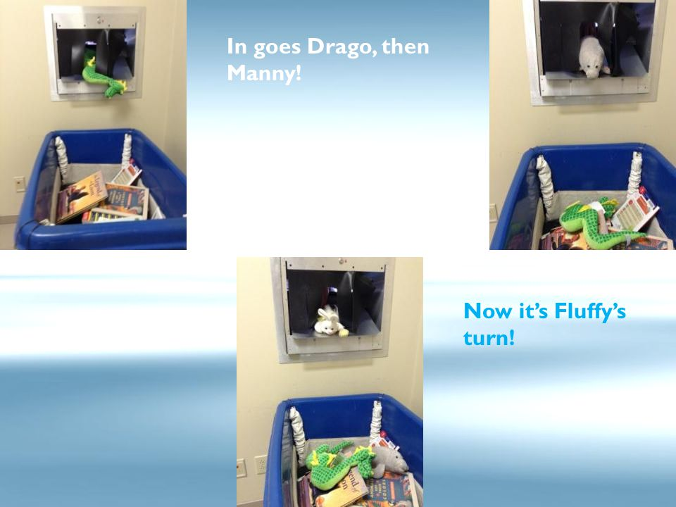 In goes Drago, then Manny! Now it's Fluffy's turn!