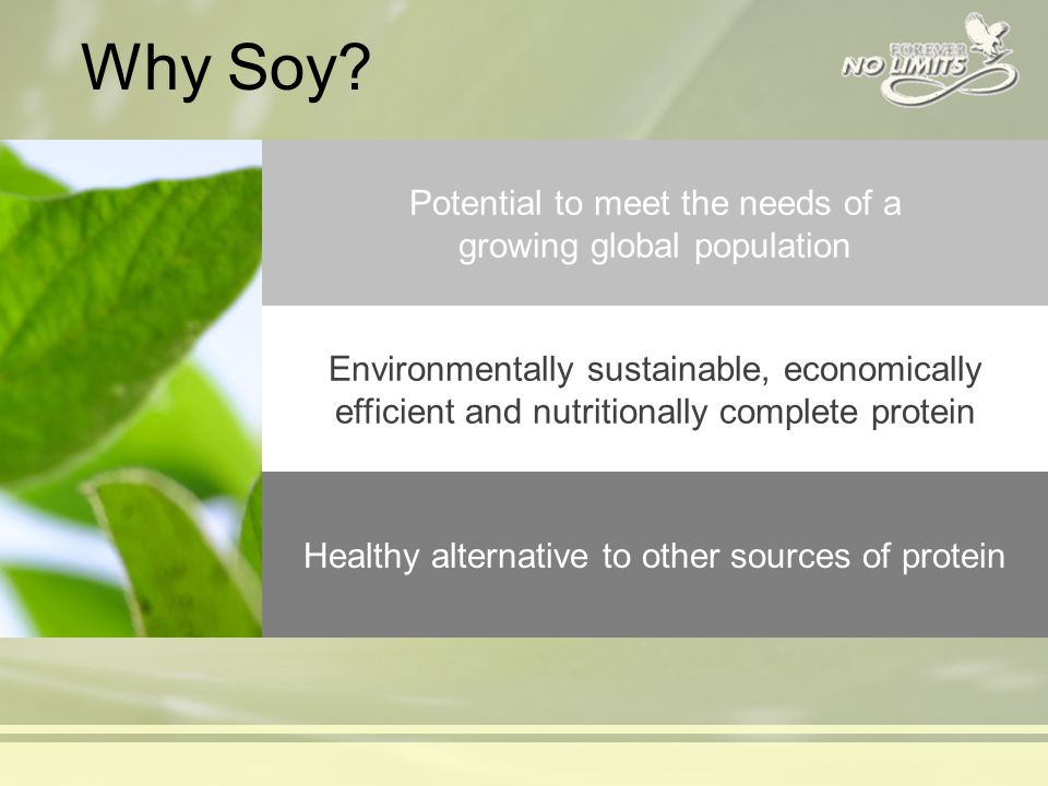 Why Soy.