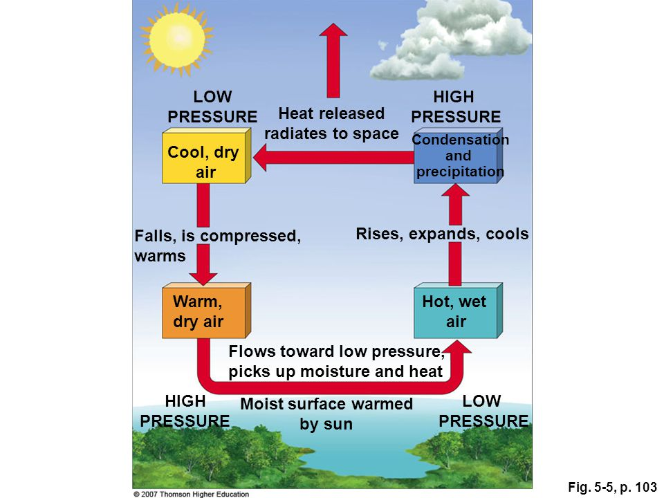 Fig. 5-5, p. 103 Warm, dry air Flows toward low pressure, picks up moisture and heat Moist surface warmed by sun HIGH PRESSURE LOW PRESSURE Falls, is