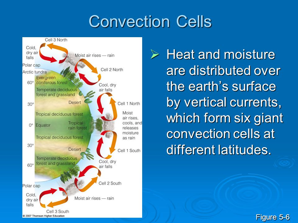Convection Cells  Heat and moisture are distributed over the earth's surface by vertical currents, which form six giant convection cells at different