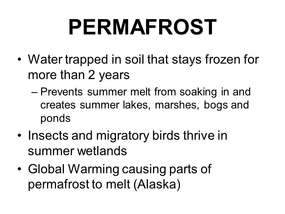 PERMAFROST Water trapped in soil that stays frozen for more than 2 years –Prevents summer melt from soaking in and creates summer lakes, marshes, bogs
