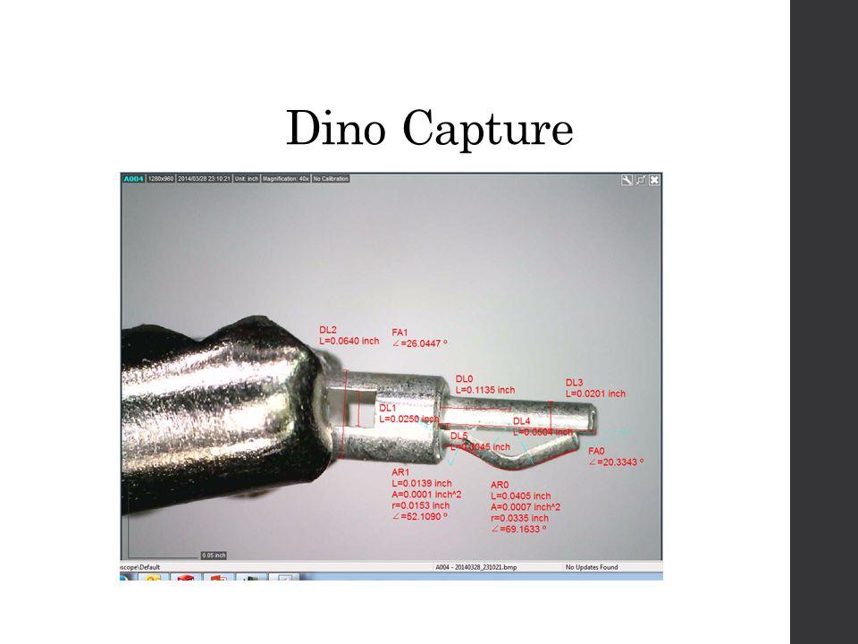 Dino Capture