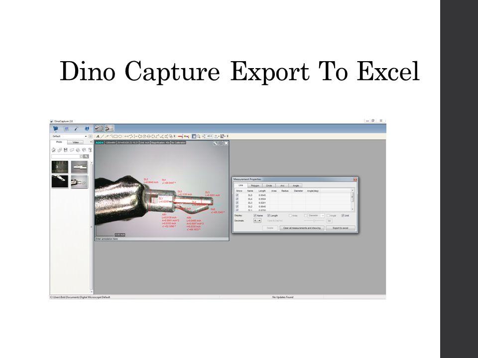 Dino Capture Export To Excel