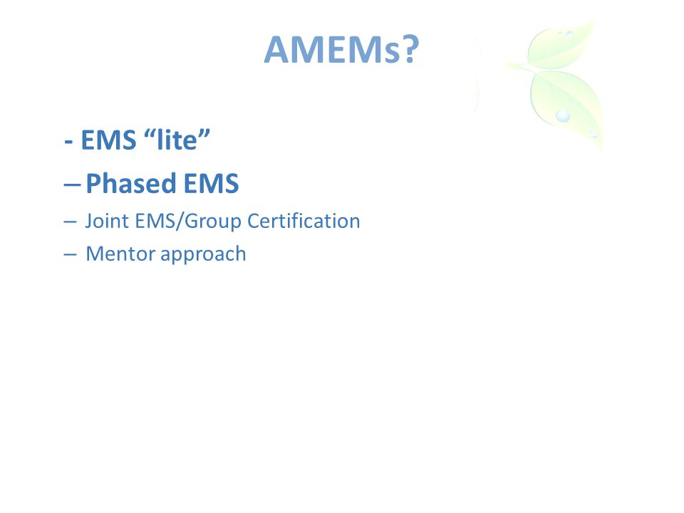 AMEMs - EMS lite – Phased EMS – Joint EMS/Group Certification – Mentor approach