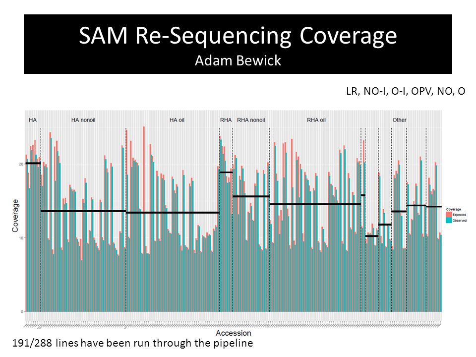 SAM Re-Sequencing Coverage Adam Bewick 191/288 lines have been run through the pipeline LR, NO-I, O-I, OPV, NO, O