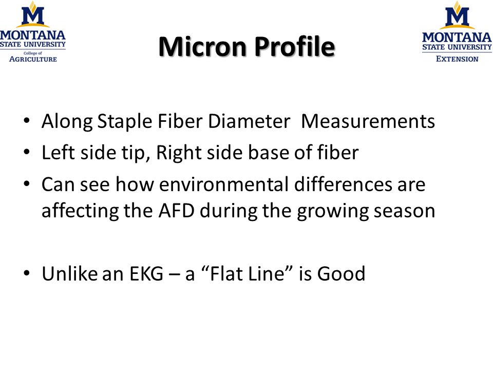 Micron Profile Along Staple Fiber Diameter Measurements Left side tip, Right side base of fiber Can see how environmental differences are affecting the AFD during the growing season Unlike an EKG – a Flat Line is Good