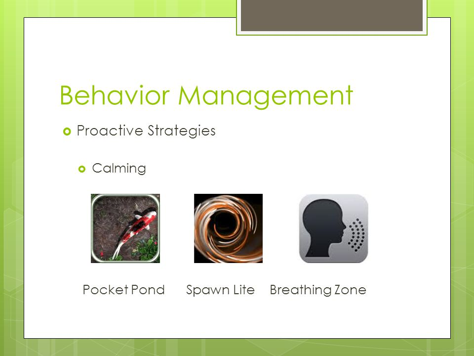 Behavior Management  Proactive Strategies  Calming Pocket Pond Spawn Lite Breathing Zone