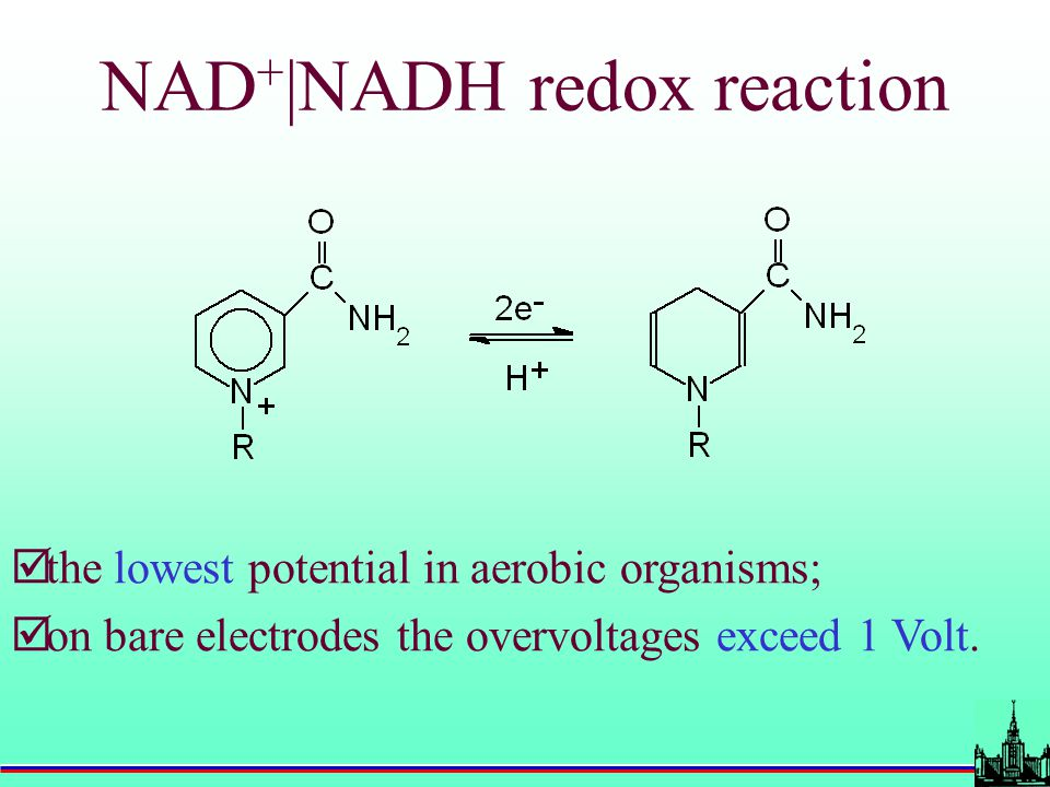 NAD + |NADH redox reaction  the lowest potential in aerobic organisms;  on bare electrodes the overvoltages exceed 1 Volt.