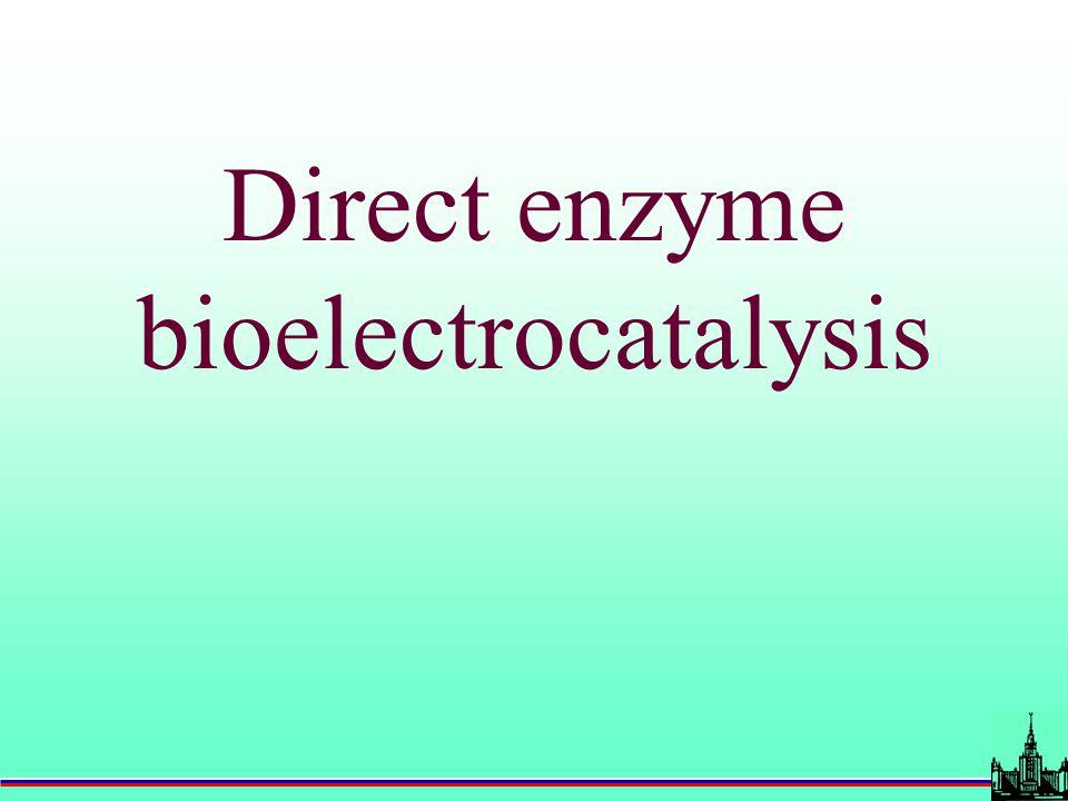 Direct enzyme bioelectrocatalysis