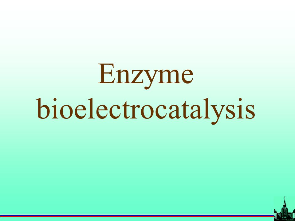 Enzyme bioelectrocatalysis