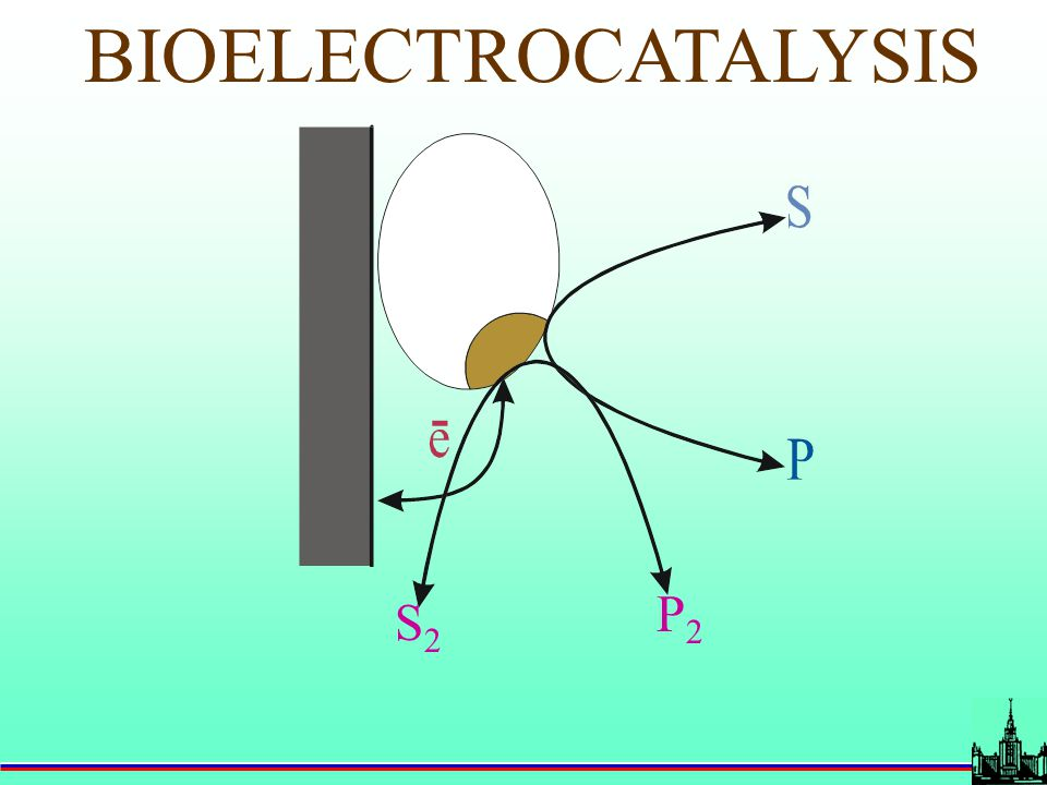 How to involve enzymes in bioelectrocatalysis? Use of mediators: Direct bioelectrocatalysis: