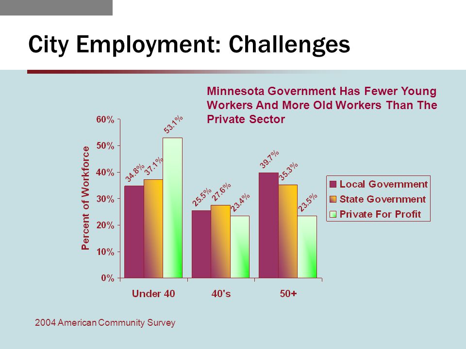 City Employment: Challenges 2004 American Community Survey Minnesota Government Has Fewer Young Workers And More Old Workers Than The Private Sector