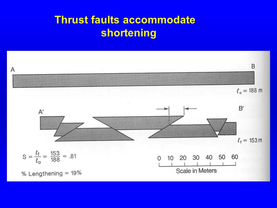 Thrust faults accommodate shortening