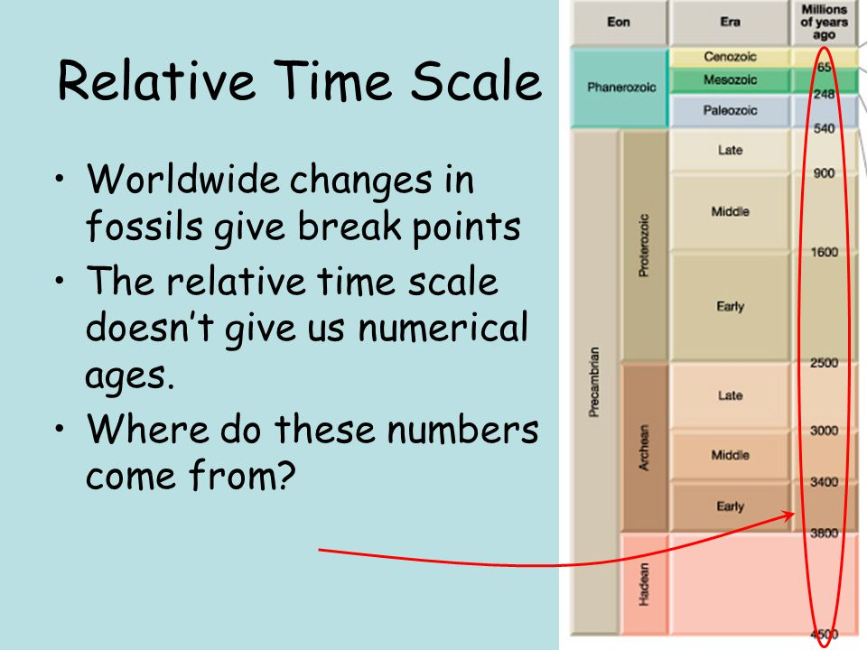 Relative Time Scale Worldwide changes in fossils give break points The relative time scale doesn't give us numerical ages. Where do these numbers come