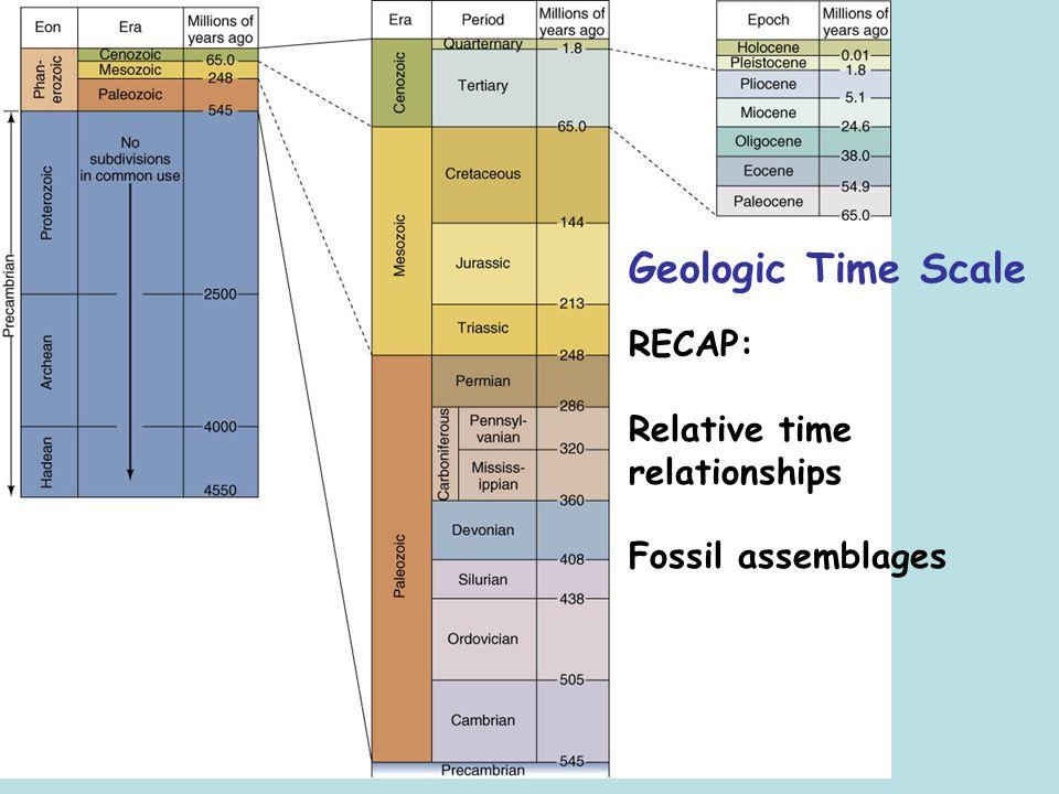Geologic Time Scale RECAP: Relative time relationships Fossil assemblages