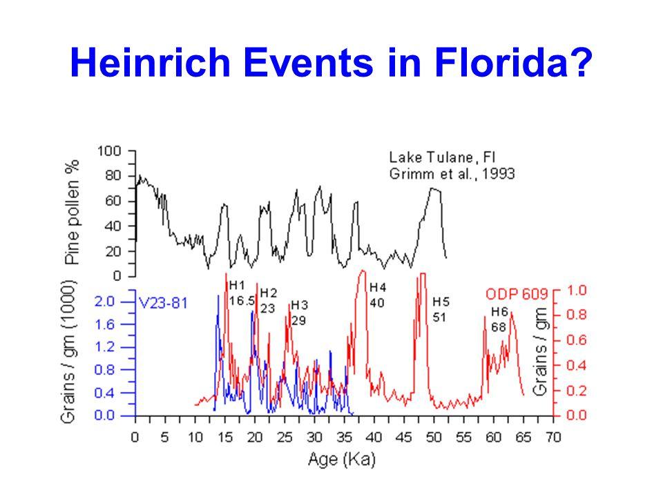 Heinrich Events in Florida
