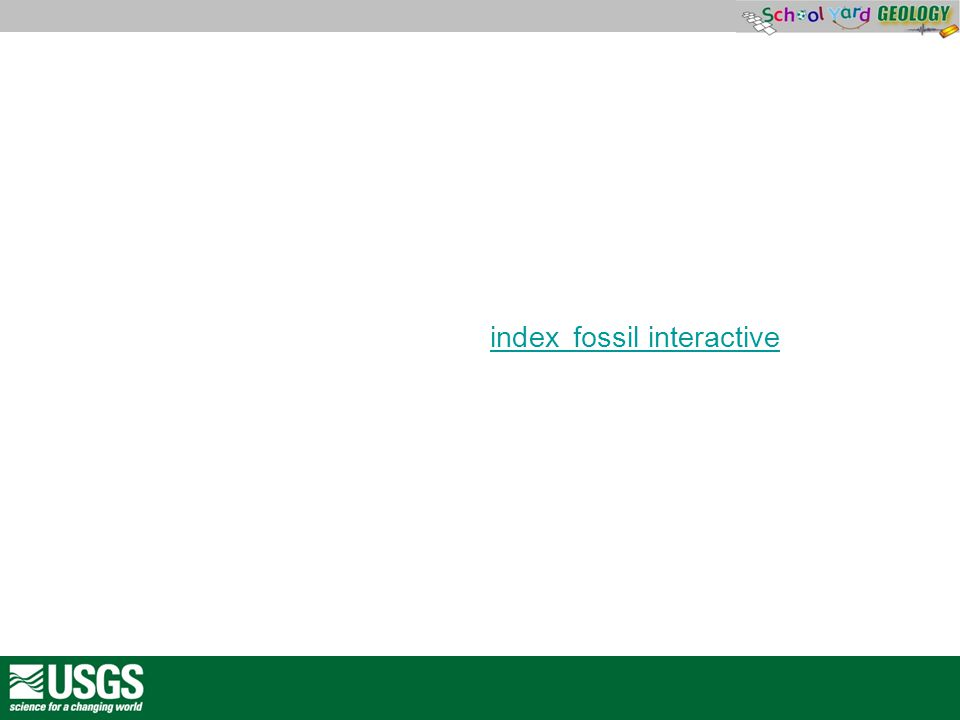 http://www.phschool.com/webcodes10/index.cfm wcprefix=c fp&wcsuffix=2042&fuseaction=home.gotoWebCode&x=0&y= 0http://www.phschhttp://index fossil interactiveindex fossil interactive