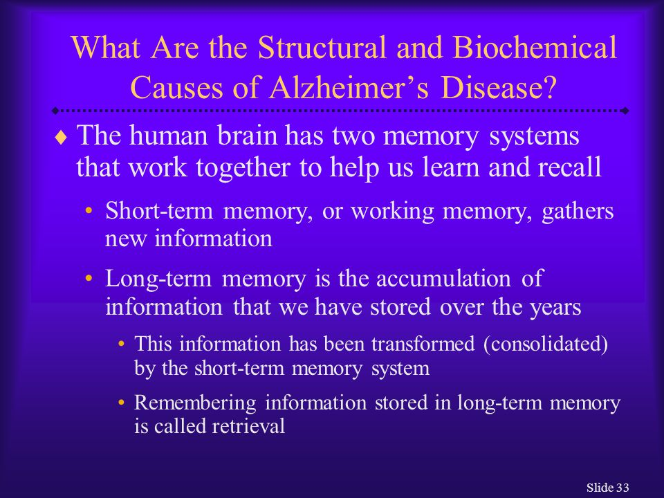 Slide 33 What Are the Structural and Biochemical Causes of Alzheimer's Disease?  The human brain has two memory systems that work together to help us
