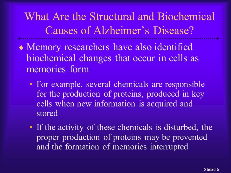 Slide 36 What Are the Structural and Biochemical Causes of Alzheimer's Disease?  Memory researchers have also identified biochemical changes that occ