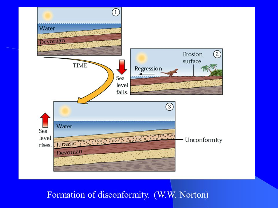 Disconformities do not show angular discordance, but an erosion surface separates the two rock bodies.