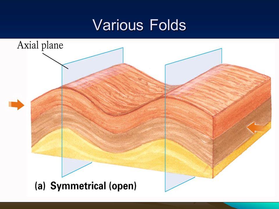 Various Folds