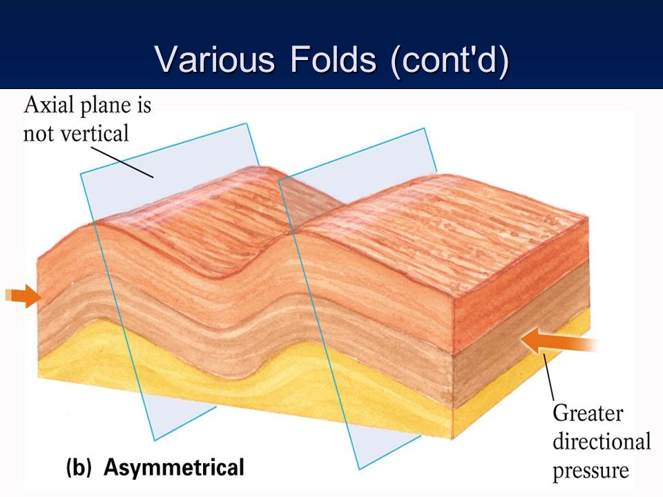 Various Folds (cont d)