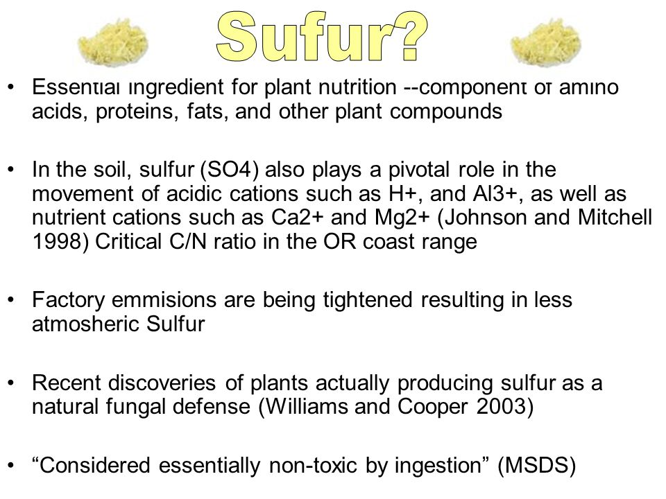 Essential ingredient for plant nutrition --component of amino acids, proteins, fats, and other plant compounds In the soil, sulfur (SO4) also plays a pivotal role in the movement of acidic cations such as H+, and Al3+, as well as nutrient cations such as Ca2+ and Mg2+ (Johnson and Mitchell 1998) Critical C/N ratio in the OR coast range Factory emmisions are being tightened resulting in less atmosheric Sulfur Recent discoveries of plants actually producing sulfur as a natural fungal defense (Williams and Cooper 2003) Considered essentially non-toxic by ingestion (MSDS)