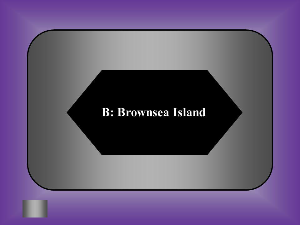 B: Brownsea Island