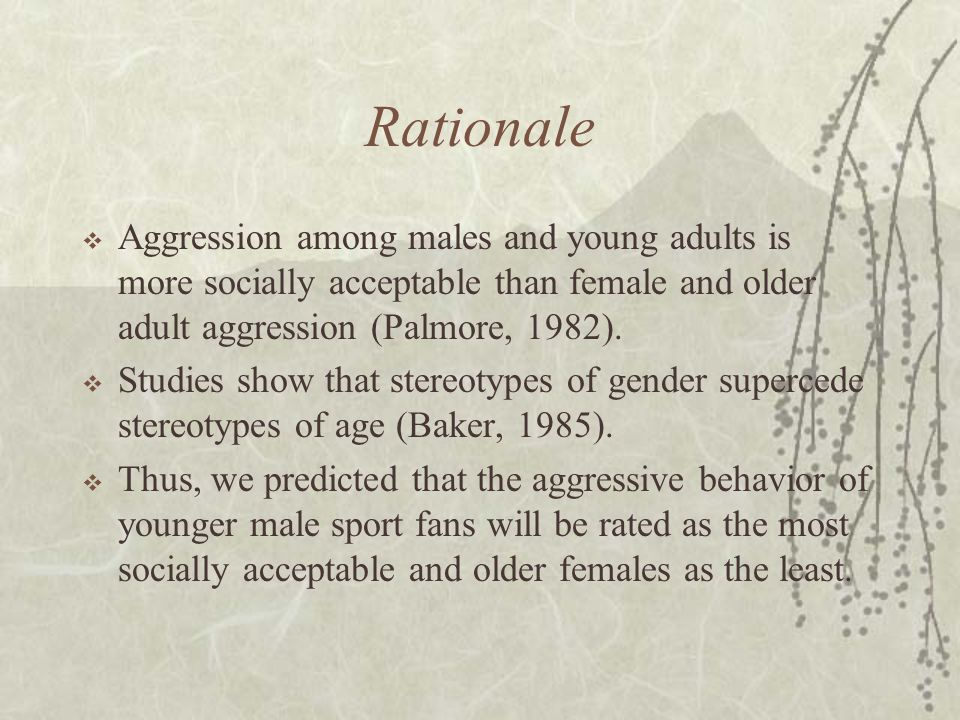 Rationale  Aggression among males and young adults is more socially acceptable than female and older adult aggression (Palmore, 1982).