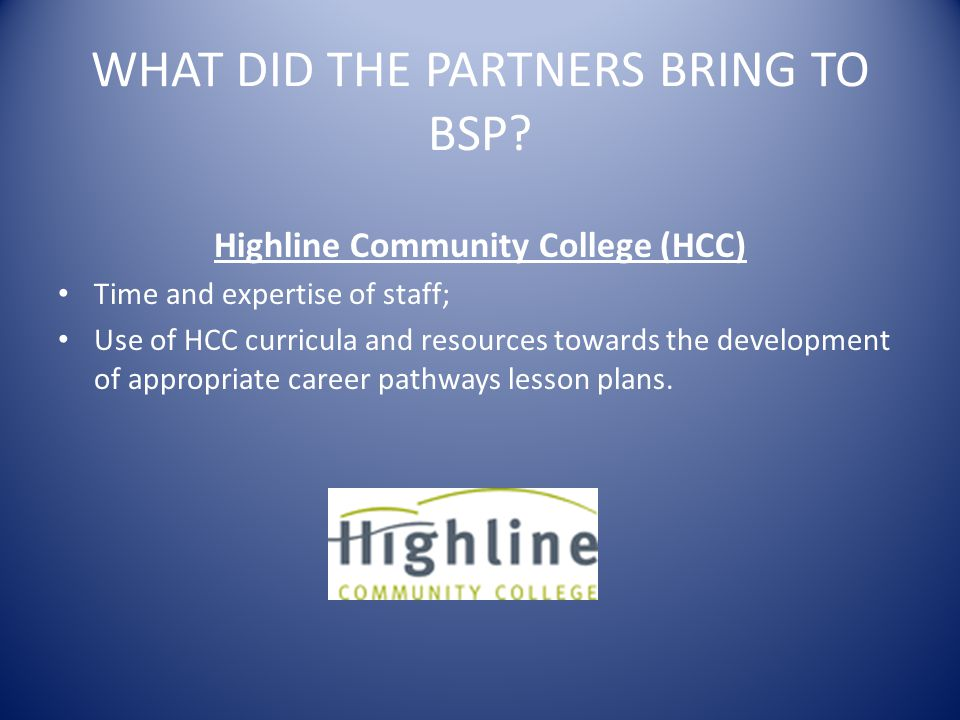 WHAT DID THE PARTNERS BRING TO BSP.