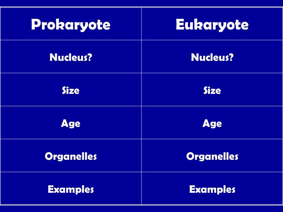 ProkaryoteEukaryote Nucleus? Size Age Organelles Examples