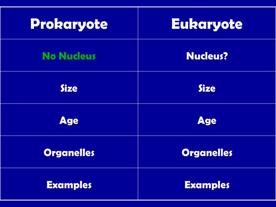 ProkaryoteEukaryote No NucleusNucleus Size Age Organelles Examples