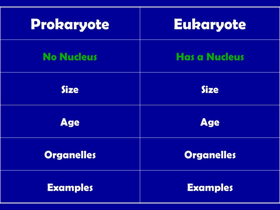 ProkaryoteEukaryote No NucleusHas a Nucleus Size Age Organelles Examples