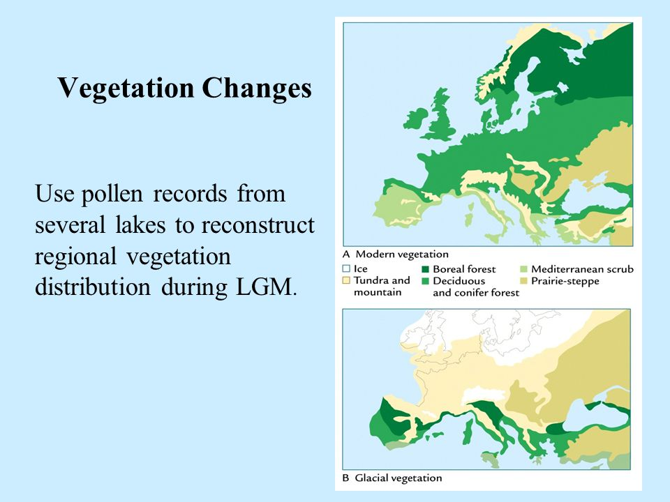 16 Vegetation Changes Use pollen records from several lakes to reconstruct regional vegetation distribution during LGM.