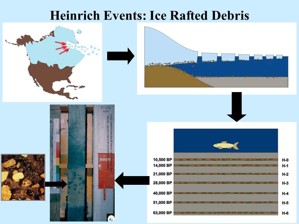 37 Heinrich Events Heinrich Events: Ice Rafted Debris