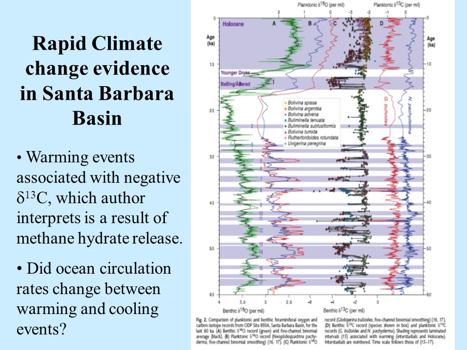 46 Rapid Climate change evidence in Santa Barbara Basin Warming events associated with negative  13 C, which author interprets is a result of methane hydrate release.