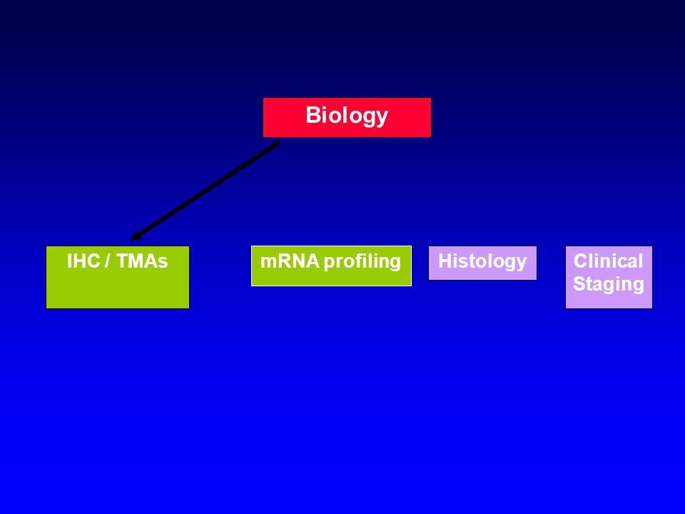 HistologyClinical Staging Biology IHC / TMAsmRNA profiling