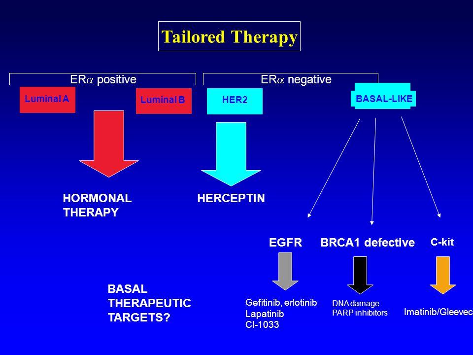 Tailored Therapy ER  positiveER  negative HORMONAL THERAPY HERCEPTIN EGFR C-kit BRCA1 defective Gefitinib, erlotinib Lapatinib CI-1033 DNA damage PARP inhibitors Imatinib/Gleevec Luminal A Luminal B HER2 BASAL-LIKE BASAL THERAPEUTIC TARGETS