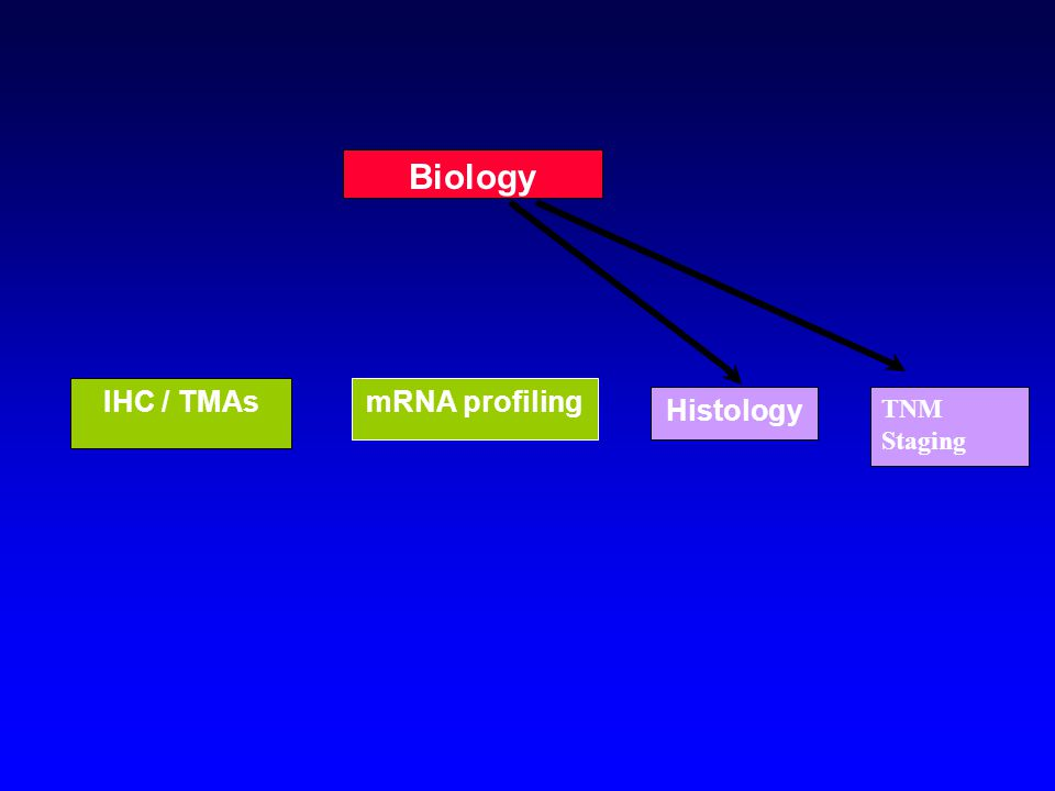 HistologyClinical Staging Biology IHC / TMAsmRNA profiling
