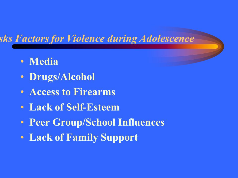 Risks Factors for Violence during Adolescence Media Drugs/Alcohol Access to Firearms Lack of Self-Esteem Peer Group/School Influences Lack of Family Support