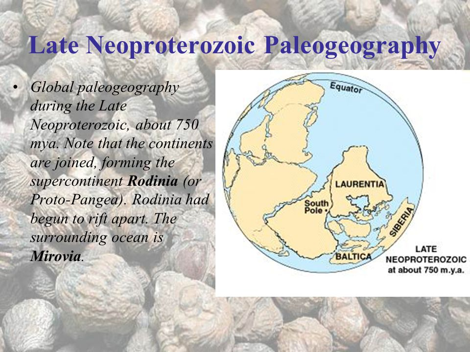 Late Neoproterozoic Paleogeography Global paleogeography during the Late Neoproterozoic, about 750 mya.