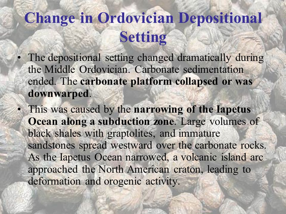 Change in Ordovician Depositional Setting The depositional setting changed dramatically during the Middle Ordovician.
